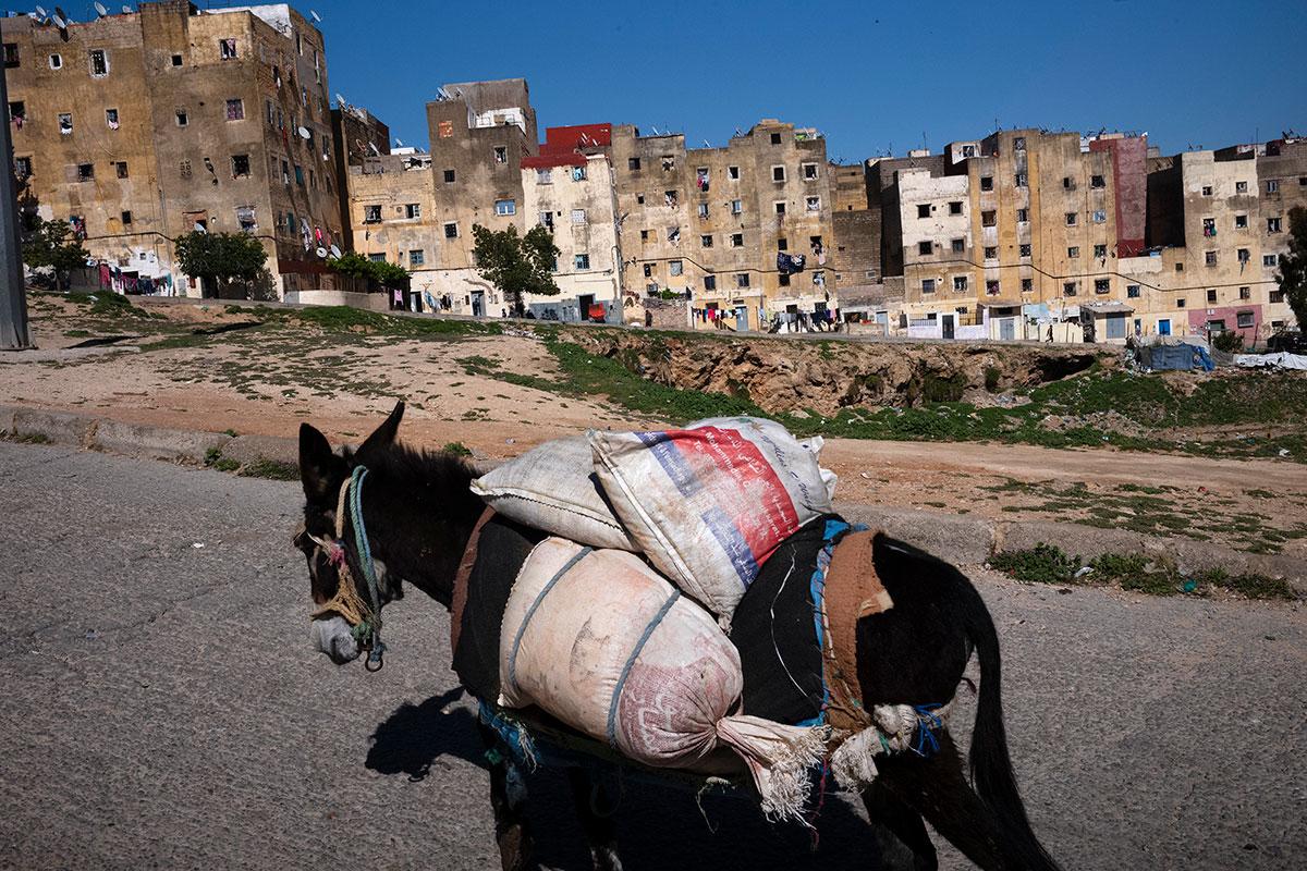 Morocco, Rabat, 2018